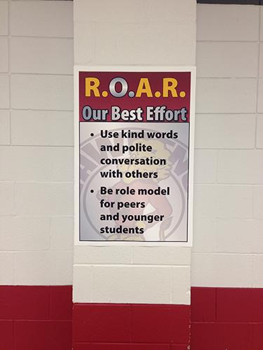 Roar effort examples