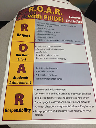 Roar Expectation Matrix