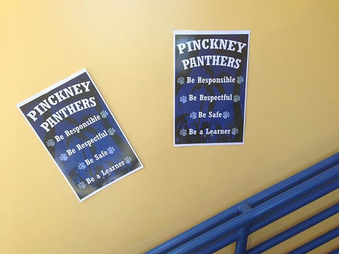 Pinckney Panthers expectations